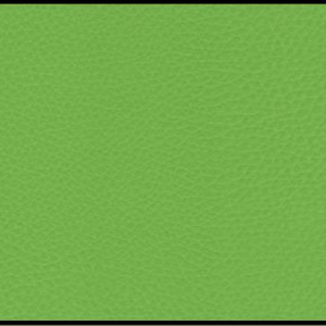 Frontier verde pistacho